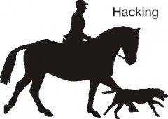 The Profiles Range Key Rack - 3 Hook