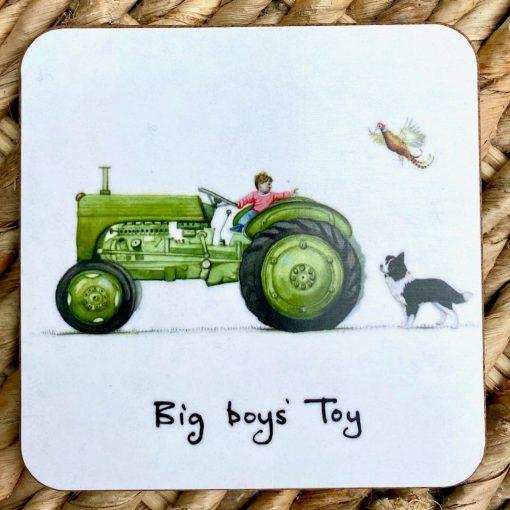 At Home In The Country Coaster - Big Boys' Toy