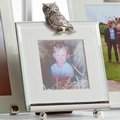 At Home In The Country Photo Frame - Owl