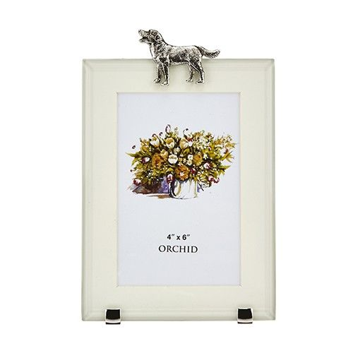 At Home In The Country Rectangle Photo Frame - Labrador